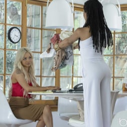 Elsa Jean in 'Babes' View From the Top (Thumbnail 30)